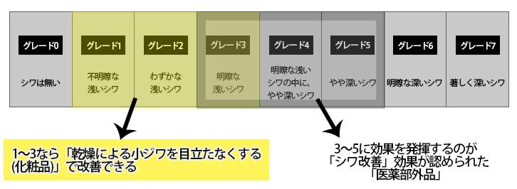 シワグレード説明図1