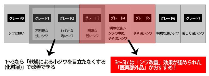 シワグレード説明図2